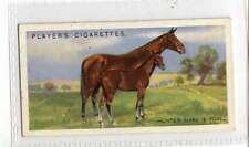 (Jm301-100)Players,Live Stock,Hunter Mare and Foal,1925 #16