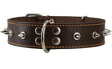 "Genuine Leather Dog Collar Spiked 20""-24"" neck 1.6"" wide Rottweiler Bull Terrier"