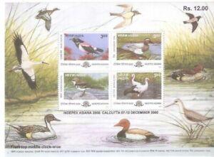 INDIA 2000 Migratory Birds Ducks Indepex Asiana Minisheet MNH
