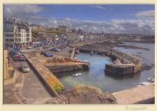 PORTSTEWART HARBOUR PHOTOGRAPH MOUNTED 10 X 8 BY VICTOR HAZELTON BN