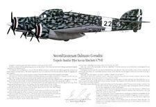 Italian, S.79 Torpedo Bomber, Signed by the Pilot! Aviation Art, Ernie Boyette