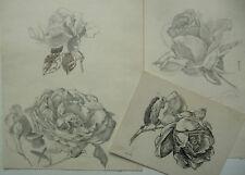 Heinrich Aigner, 3 Blätter mit Rosen, Nachlaßstempel