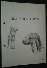 Bedlington Terrier RAS Kennel Control Breed Standards M Davidson Ill