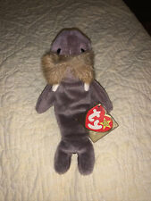 Super Rare Ty 4082 Beanie Baby Jolly Walrus Style 1996 *Mint Condition*