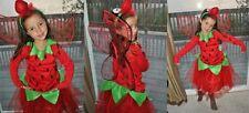 NEW POTTERY BARN KIDS TREAT BAG & STRAWBERRY FAIRY TUTU HALLOWEEN COSTUME 3T 3