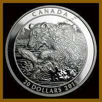 Canada $20 Dollars Silver Proof Coin, 1 oz 2015 Grizzly Bear the Catch