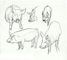 HUGH LAIDMAN Rare c1970's Original Charcoal/Pencil Illustration Drawing of PIGS