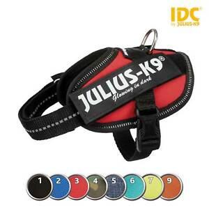 Julius-K9 Idc Power Harness Dog Harness Harness Dog Padded Baby Adult