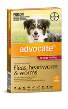 advocate Dog Flea, Tick Remedies