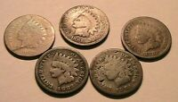 1880, 81,82,83,84 decent AG-Good Indian Cent Lot of 5 Original Penny USA Coins