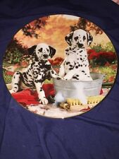 The Hamilton Collection You Missed A Spot Limited Edition Plate