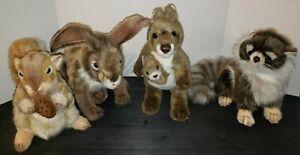 Hansa Thomas Boland Plush Realistic Lot x4 Baby Racoon Rabbit Squirrel Kangaroo