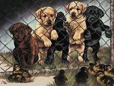 Labrador Puppies Jail birds Vintage TIN SIGN Metal Lodge Cabin Poster Baby Ducks
