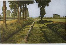 """Oliviero Masi - Beautiful Landscape Print """"Summer Harvest"""" S/N"""