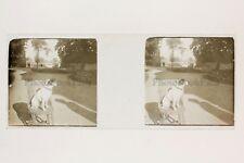 Chien sur une chaise France Suisse Plaque de verre stereo