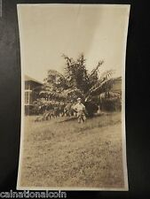 Man Standing in front of Large Palm Tree,Canal Zone, Panama Antique Real Photo