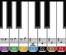 Daprofe Piano Keyboard Laminated Vinyl  Note Stickers Key Labels Decal