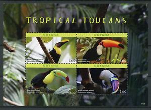 Guyana 2017 MNH Tropical Toucans 4v M/S Toucan Birds Stamps