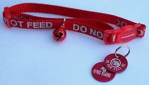 DO NOT FEED REFLECTIVE SAFETY CAT COLLAR RED & PERSONALISED TAG & BOWL ICON