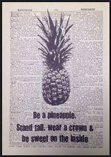 Pineapple preventivo VINTAGE dizionario libro pagina Foto Wall Art Print FRUTTA REGALO