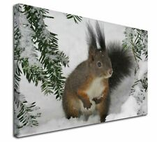 More details for forest snow squirrel x-large 30