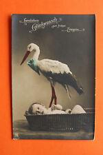 AK Storch Kind Korb 1905-15 Herzlichen Glückwunsch frohes Ereignis Störche ++