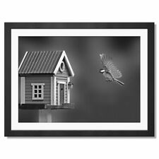 A3  - BW - Flying Tit Bird House Garden Framed Print 42X29.7cm #42566