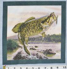 "B Fish Fabric Large Bass Rapalla Lure Fishing 10"" Quilt Block Square Cotton"