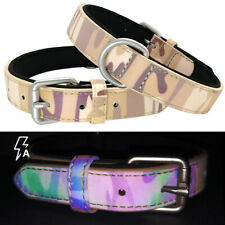 Fluorescent Dog Collar D-ring Soft Padded for Small Large Dogs Yorkie Rottweiler