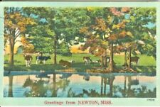 Newton MS Pastoral Greetings from Newton