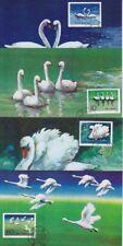 China FDC 1906 - 1909 A auf 4 Maxikarten 1983, Schwan, first day