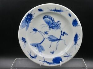 Superbly painted Chinese Blue and White Plate. Snail, Butterfly and Insects .