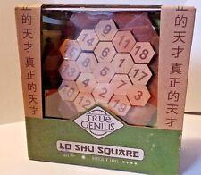 Lo Shu Square True Genius  Brain Teaser Wooden Puzzle Recent Toys