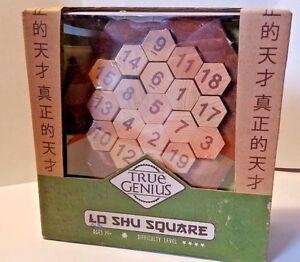 True Genius  Brain Teaser Wooden Puzzle Lo Shu Square  Recent Toys