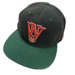 Washington University in St Louis Ball Cap Hat Snapback Baseball