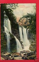 HAINES FALLS CATSKILL MOUNTAINS NY1908 BUNTING FOREST  EAGLES MERE PA  POSTCARD