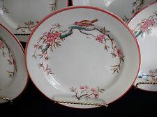 JAPANESE CHERRY BLOSSOM- ENGLAND- c.1880's- DESSERT PLATE(S)- RARE!! EXCELLENT!!