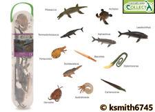 CollectA PREHISTORIC MARINE ANIMAL SET TUBE x12 figures plastic toy sea creature