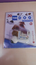 COLECCION THE DOG   JACK RUSSEL