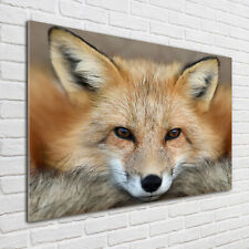 Wandbild Glas-Bild Druck auf Glas 100x50 Deko Tiere Bienen