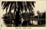 Buenos Aires Argentinien Argentina AK ~1930/40 Teich See Palmen Palermo El Lago