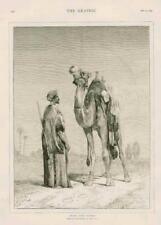 1873 - Antique Print FINE ART Arab Camel Lewis Desert Gun (162)