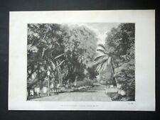 Gravure 1877 La Cathédrale de Calcutta Indes