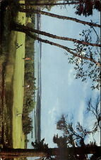 St. Andrews NB Algonquin Golf Course Postcard myn