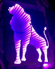 The Lion King First Infinity Illusion LED Rgb Handmade Mirror