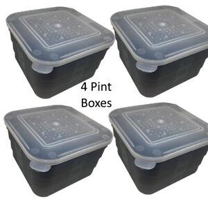 Maggot Box Bait Tub Boxes Square Black 4 PINT Coarse Match Fishing