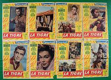 G57 LOTTO FOTOBUSTE LA TIGRE STEWART GRANGER ANTHONY STEEL BARBARA RUSH FREGONES