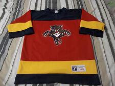 Vintage John Vanbiesbrouck Florida Panthers NHL Logo 7 Jersey Youth LARGE
