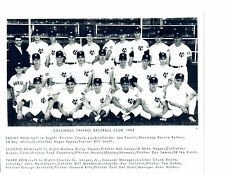 1964 COLUMBUS YANKEES TEAM 8X10  PHOTO WHITE REPOZ   BASEBALL USA