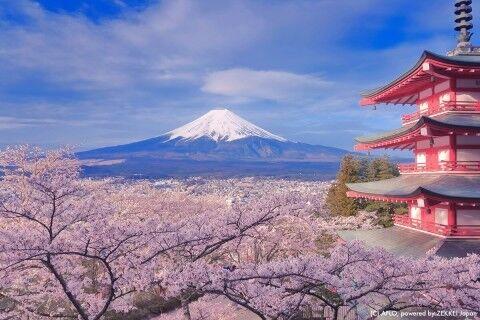 YUUSINYA JAPAN